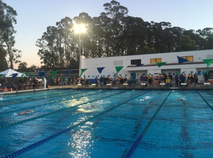 PPP_Diana_Fuchs_schwimmbad_februar